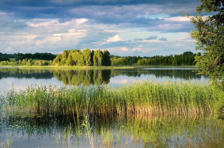Sveiki !!   LESTONIE : La majestueuse Daugava arrose les trois autres régions de ce pays de châteaux, de lacs et de forêts.
