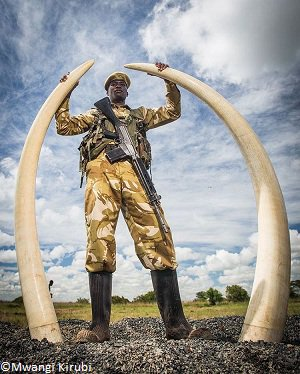 HOMMAGE :  197 défenseurs de l'environnement tués au nom de leur cause...