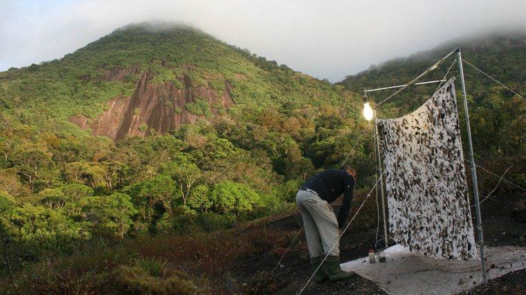 Les scientifiques à l'assaut du mont Itoupé...