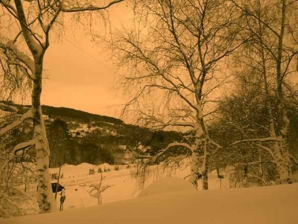 petite sortie par 60 cm de neige