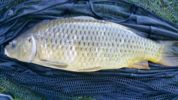 Dernière pêche dans la somme 2018
