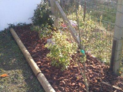 Blog de horti jhons blog de horti jhons for Bordure de jardin en rondin de bois