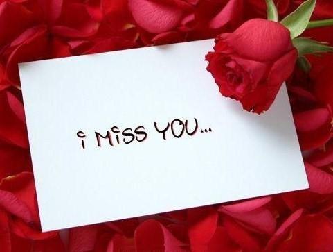 Je t'aime beaucoup ahmed, tu me manques trop