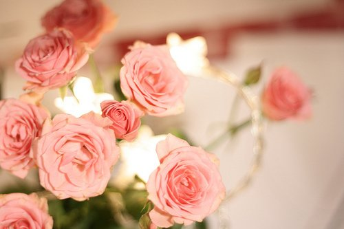 أحبك حبيبي أحمد الركراكي