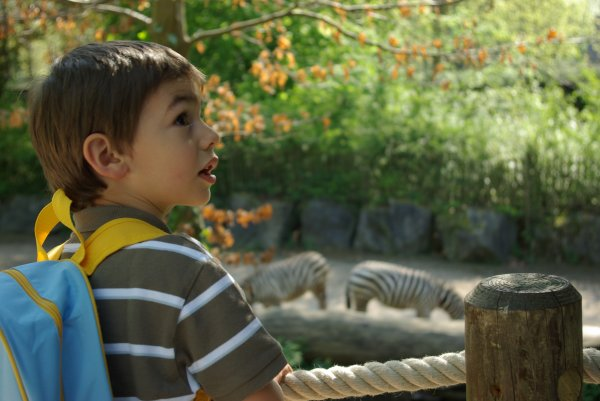 Sortie au zoo, le 19 avril 2011: