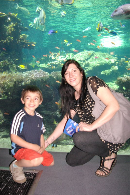 Sortie à Nausicaa, le 21 avril 2011: