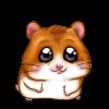 Hamster-7340
