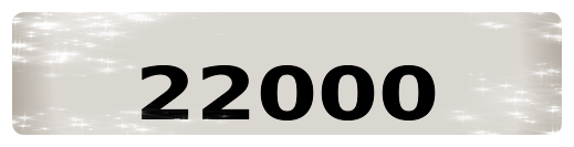 22 000