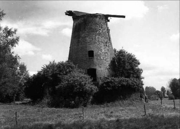 OSTICHES, le blanc moulin en 1985