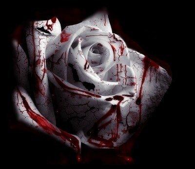 Bloody Charm