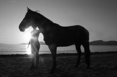Ce n'est pas mon fils, c'est mon compagnon fidéle. Ce n'est pas un amant, c'est un soutien inflexible. Ce n'est pas mon coeur, ce sont mes ailes. Ce n'est pas un cheval, c'est un ami, doux et gentil, qui parfois, comprend. Ce n'est pas un cheval, c'est Neptune.