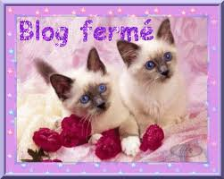 BLOG  FERME  DEFINITIVEMENT