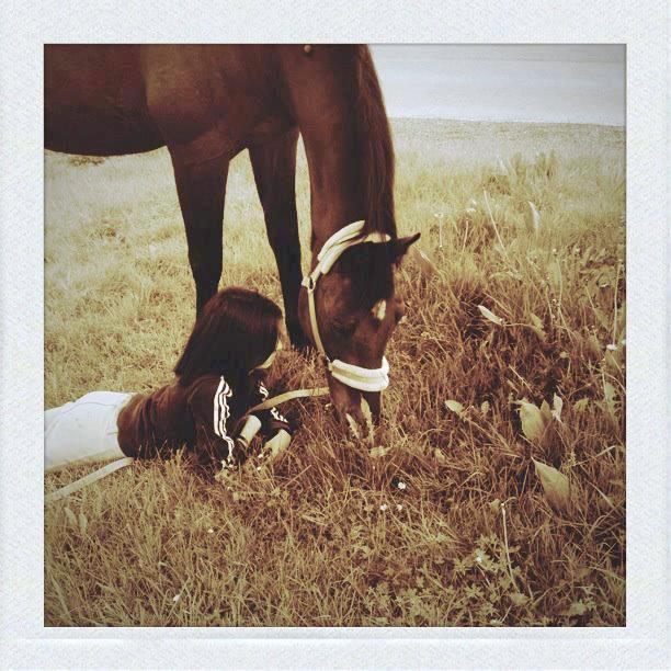 ... Il n'y a pas de secrets aussi intimes que ceux d'un cavalier et de son cheval ...