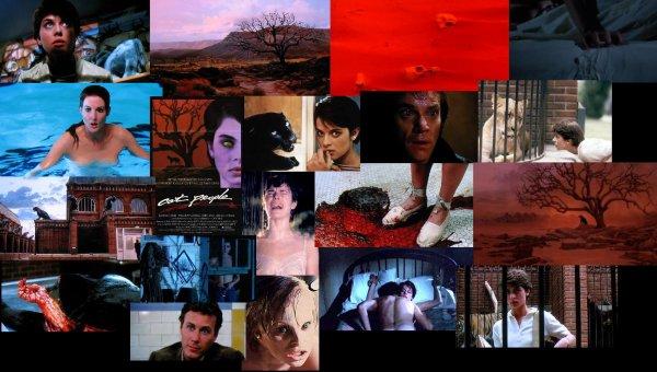 Trailer 62