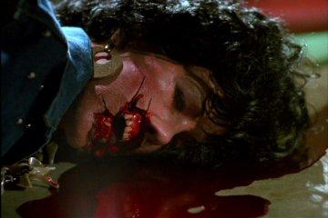 Livres de sang