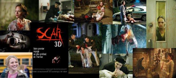 Trailer 114