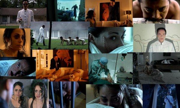 Trailer 119