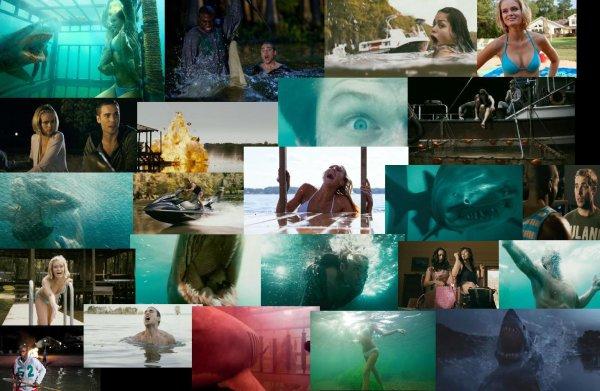 Trailer 126