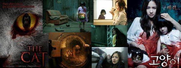 Trailer 144