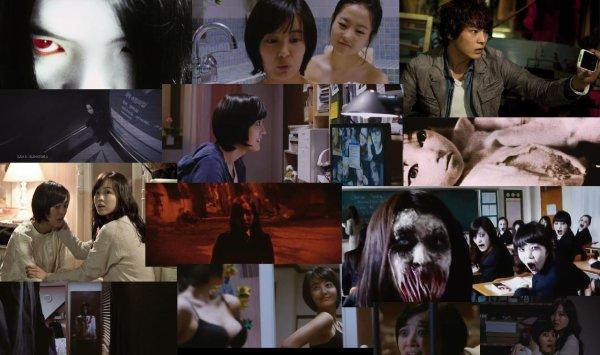Trailer 172