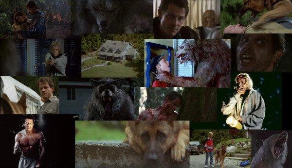 Trailer 194