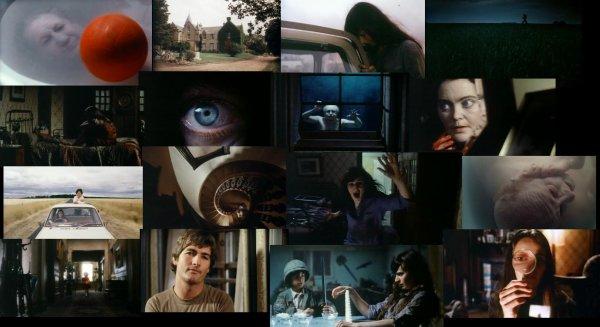 Trailer 203