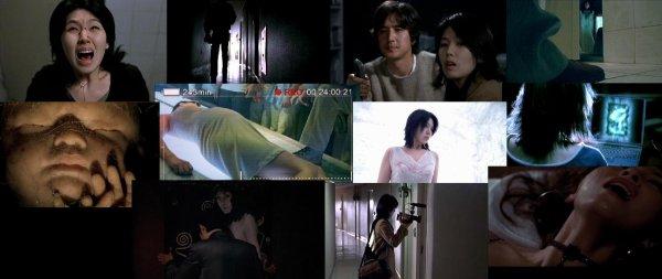 Trailer 216