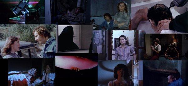 Trailer 218