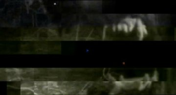 Fauve footage
