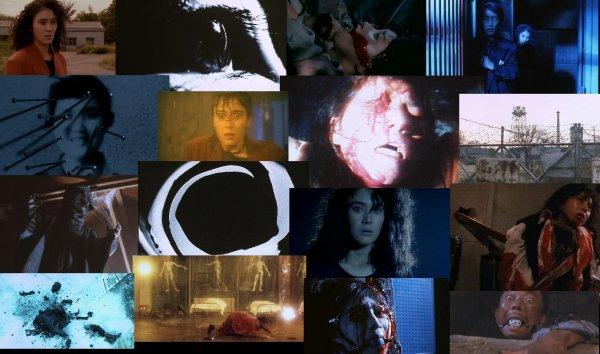 Trailer 223