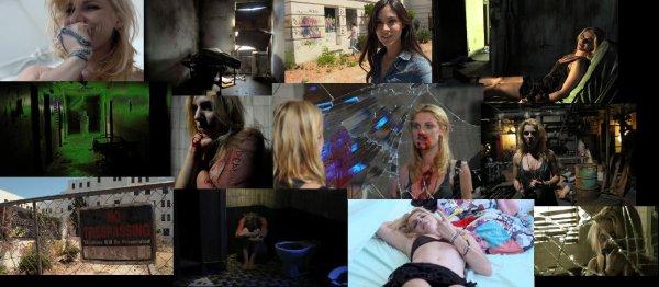 Trailer 224