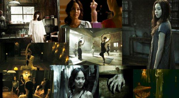 Trailer 231