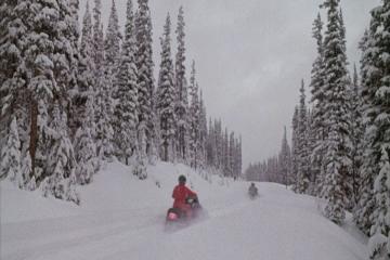 Les Bronzés meurent sur leurs skis