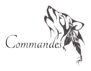 Commandes ~ FERMÉ
