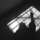 Photo de fractafemores