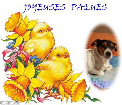 (l)  JOYEUSES PAQUES (l)