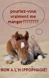 Photo de maltraitence-de-chevaux