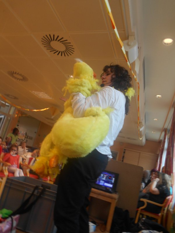 coin coin le canard