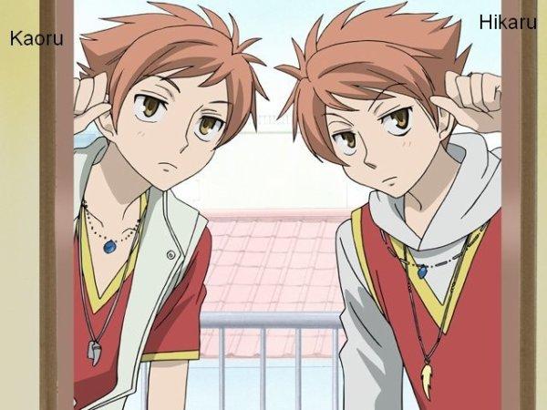 Kaoru et Hikaru Hitachiin