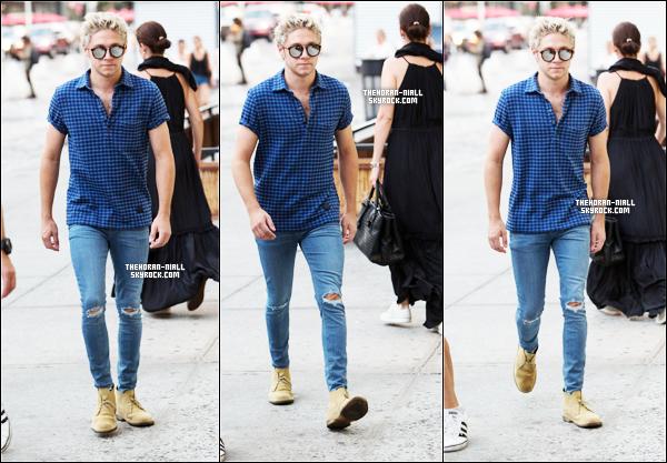 03.08.15 - Niall se baladant dans New York City.  J'aime beaucoup sa tenue, en particulier le slim déchiré au niveau des genoux. Je lui accorde donc un TOP. Et toi ?