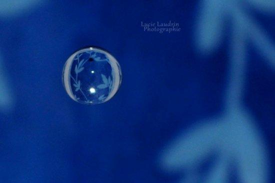 """' Thème 51 : LA LETTRE G .  . Gagnante : LUCIE L. . . 14ans - [ 46 ] - """" Nikon D5000 """" *"""