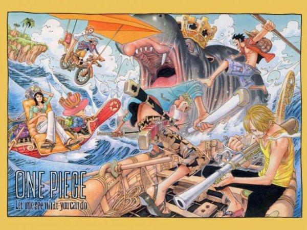 Quelques images de l'équipage de Luffy