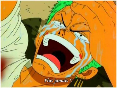 Moment triste... One piece!