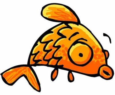 Les poissons d'avril débarquent aussi sur skyrock !