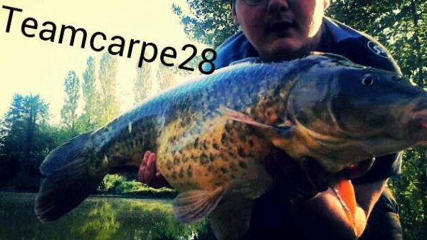 Fish 2015 part 2
