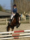 Photo de 0o-best-horses-o0