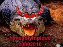 Photo de nimesolympique20092010