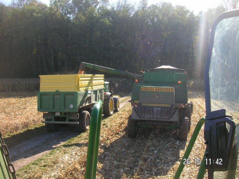 recolte maïs grain