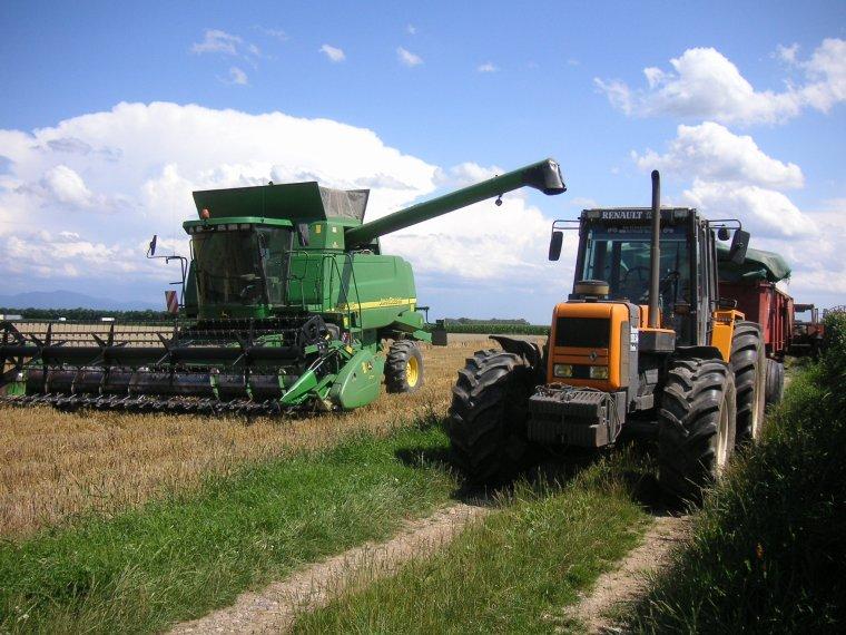 premier blé pour 2012