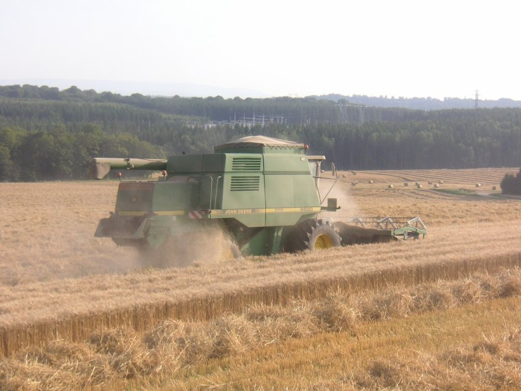 dernier blé pour 2012